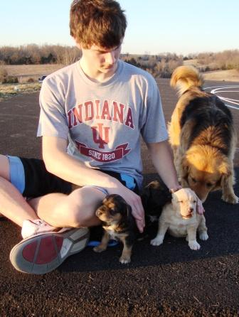 Grant and puppies