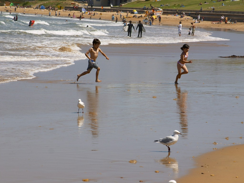 beach-seagull-children-wave