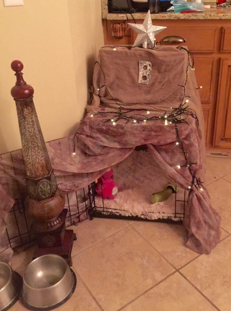 DYI-dog bed