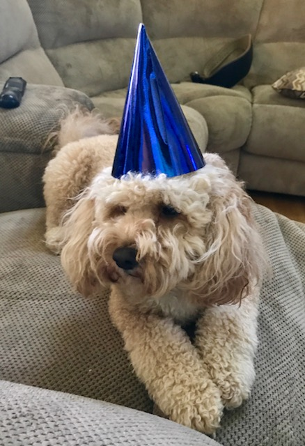 It's NanaHood's Birthday