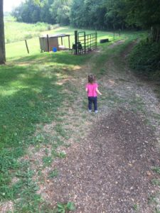 Grandchildren and the road less traveled