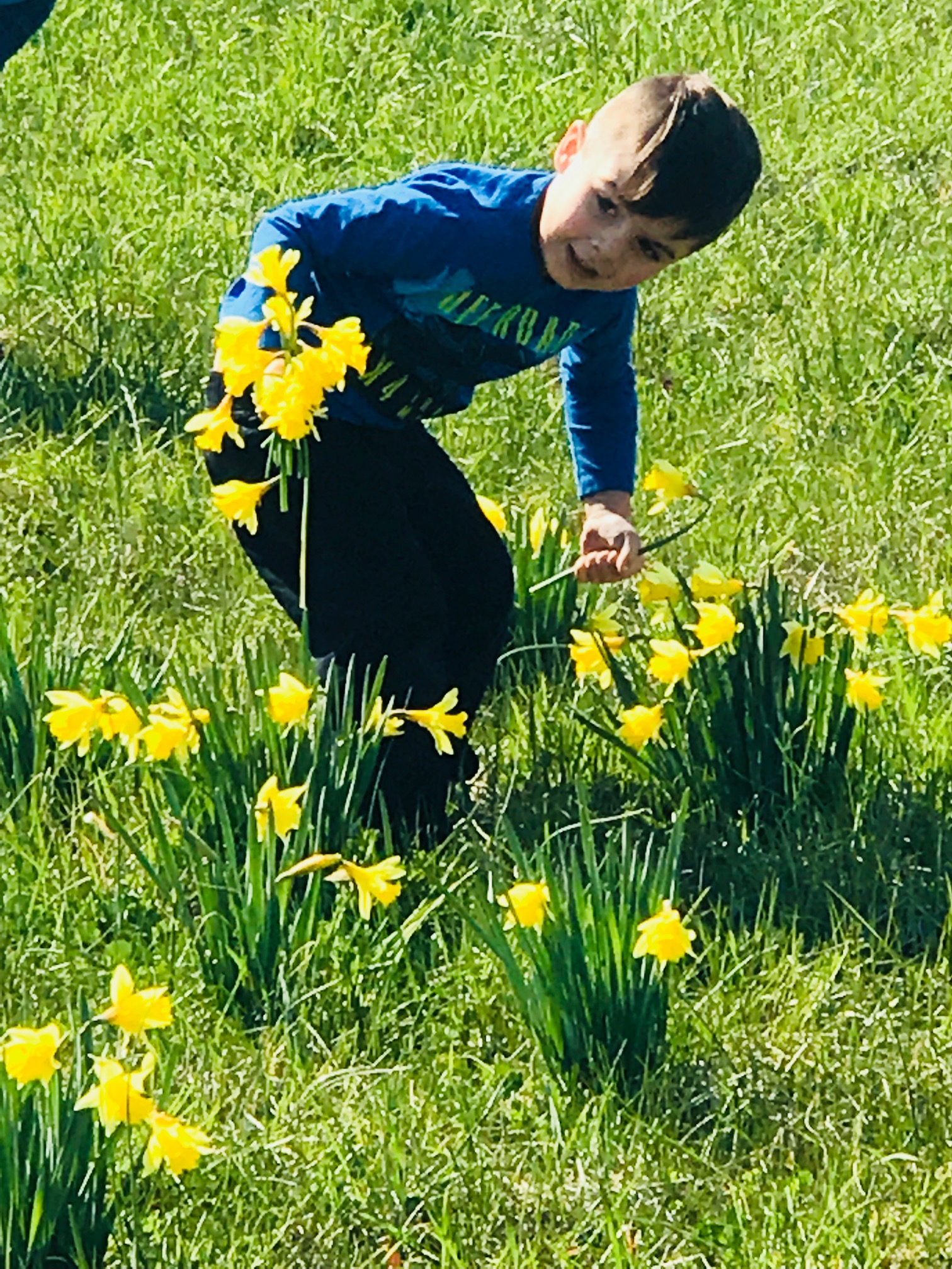 Picking Daffodils With Grandchildren - Nanahood